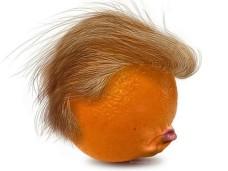 orangetrump